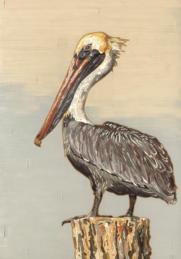 Frederick Brown Pelican
