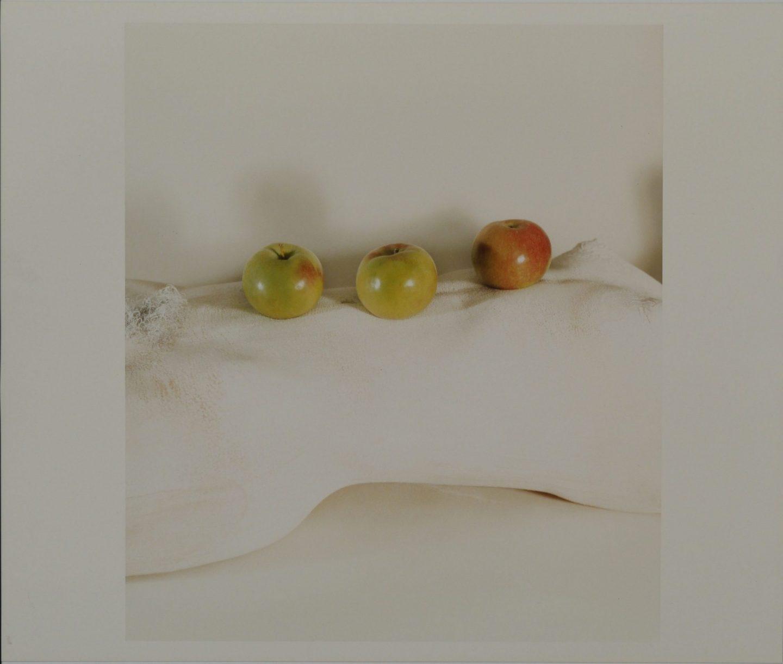 Schiavo Apples