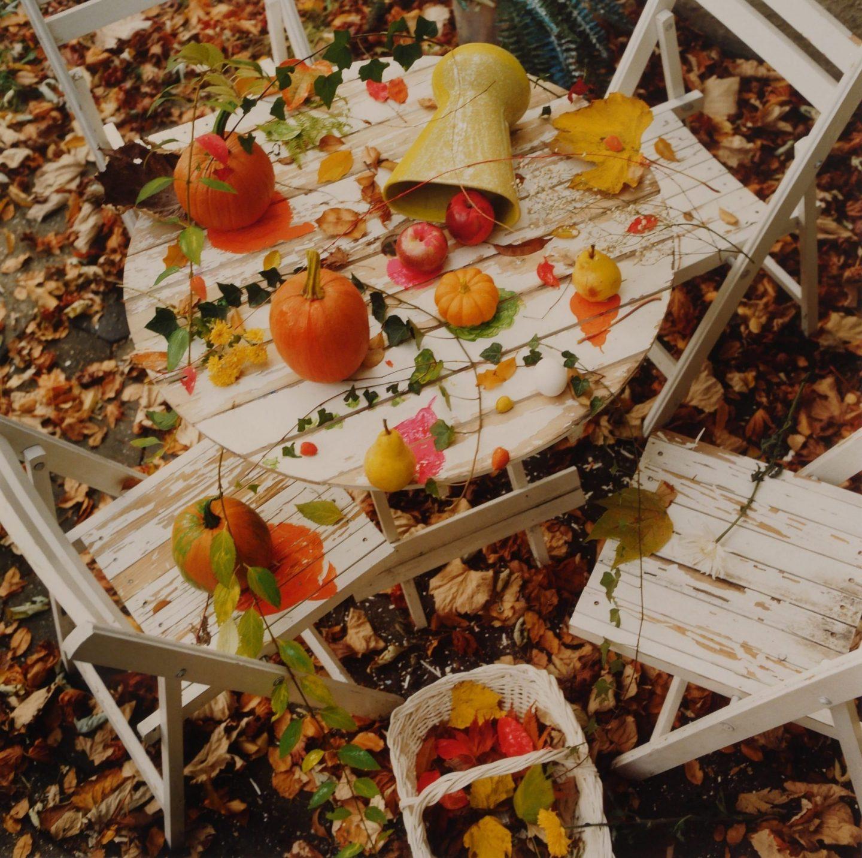 Schiavo Fall Still Life