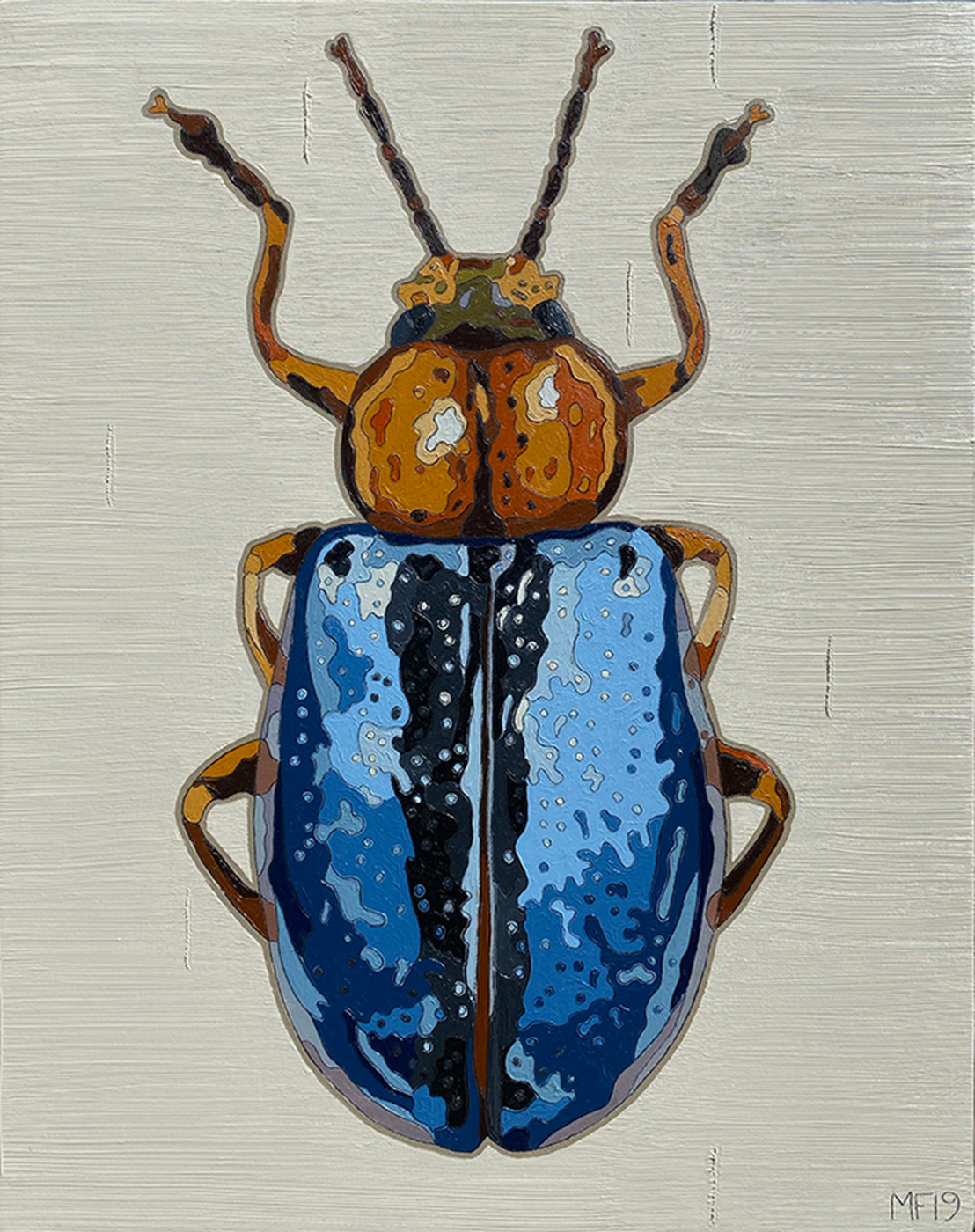 Frederick Blue Bug