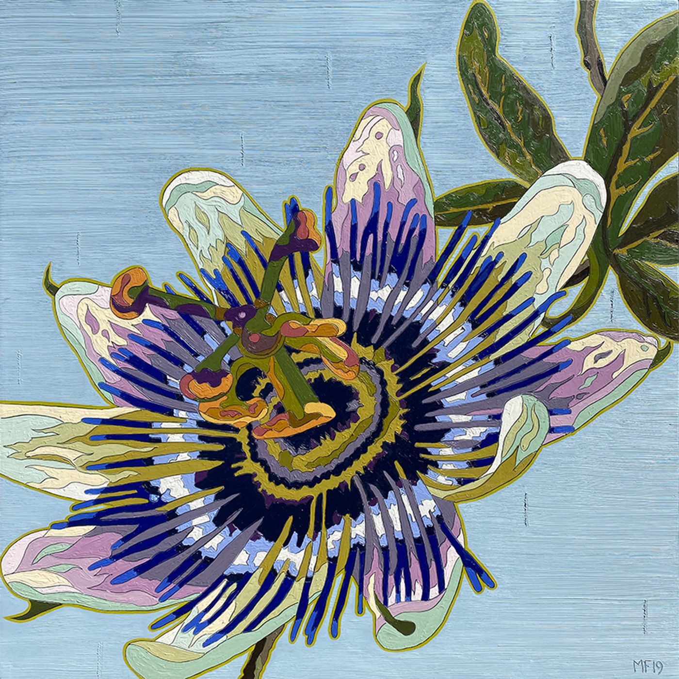 Frederick Purple Passion Flower