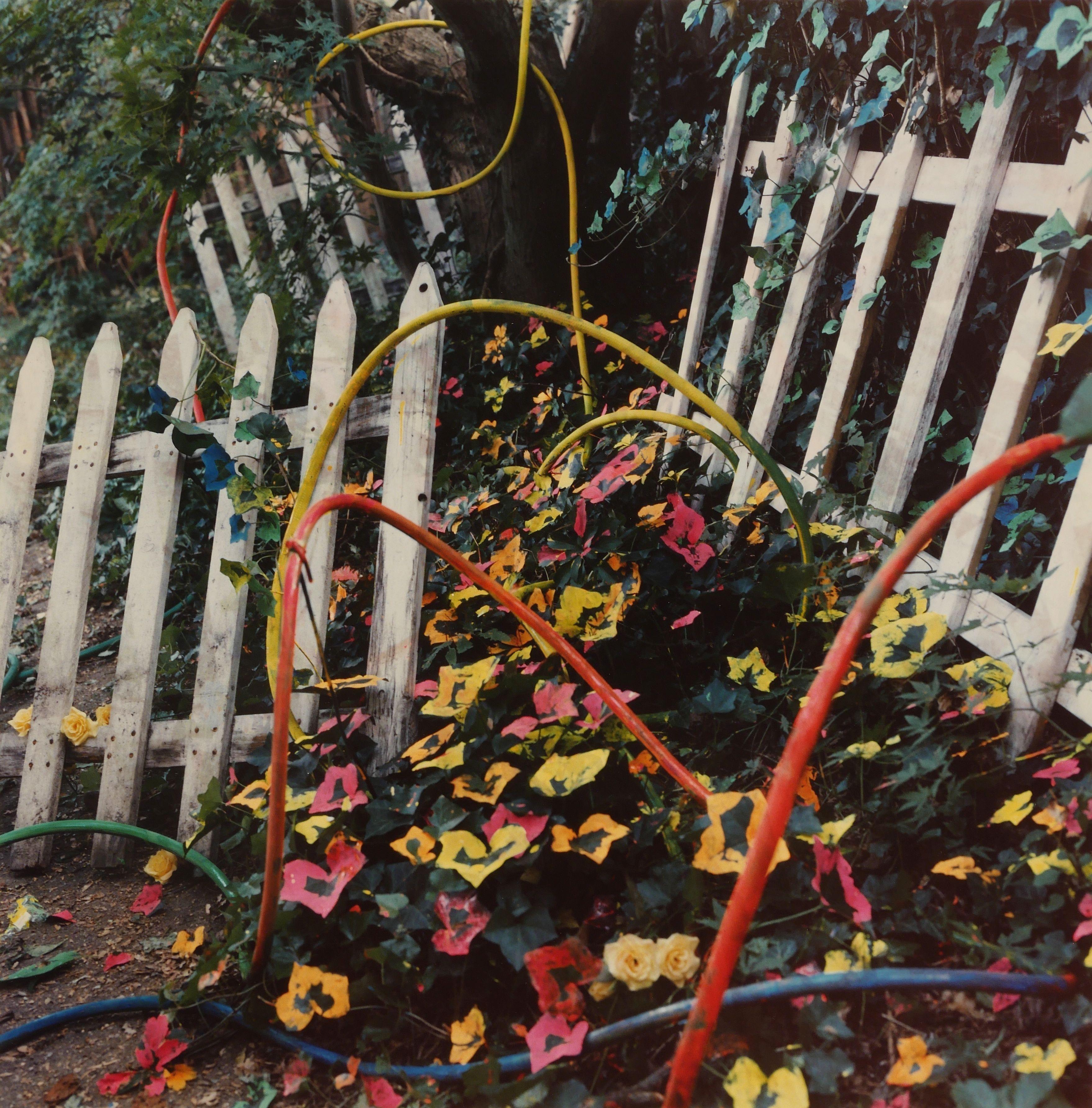 Schiavo Tumbling Fences